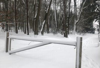 sneeuw 2021